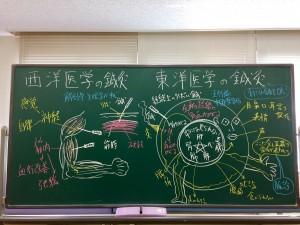 西洋医学と東洋医学の鍼灸の説明